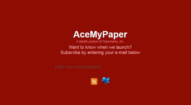 AceMyPaper.com start page at the beginning of the operation